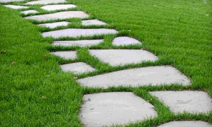 Lawn in Order - Kingston / Belleville: $54 for $120 Worth of Over Seeding and Fertilizer Services from Lawn In Order