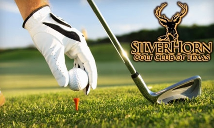 SilverHorn Golf Club of Texas - Far North Central: Private Lessons, One-Month Player's Club Membership, and Discounts at SilverHorn Golf Club of Texas. Choose from Two Options.