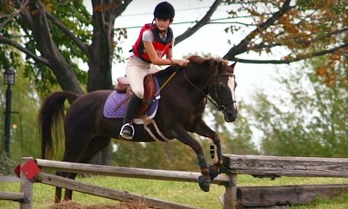 Spruce Meadow Farm - Clarence: $15 for One Half-Hour Private Horseback-Riding Lesson ($35 Value)