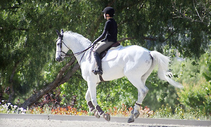 Lincourt Stables - Atwater Village: One or Three Private English-Style Horseback-Riding Lessons at Lincourt Stables (Up to 62% Off)