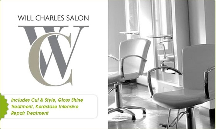 Will Charles Salon - Back Bay: $65 Cut, Style, Plus Two Hair Treatments (55% Off)