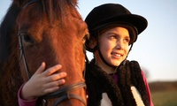 Pony Experience with Riding Lesson for One Child at Redwood Riding School (40% Off)