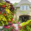 Half Off Plants & Gardening Supplies in Snellville