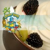 $5 for Frozen Yogurt at Yogurt Wave