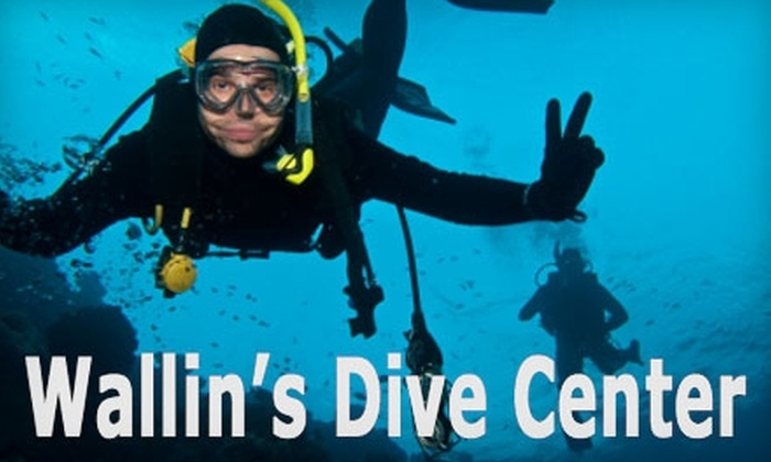Wallin's Dive Center - San Carlos: $10 for a Discover Scuba Course at Wallin's Dive Center in San Carlos ($25 Value)