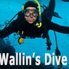 60% Off Scuba-Diving Class in San Carlos