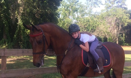 OneHour HorsebackRiding Lesson at Five Gait Stables (64% Off)