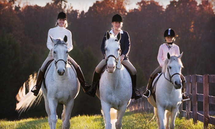 Featherbrook Farm - Corcoran: One or Three Private Horseback-Riding Lessons or Three-Day Camp at Featherbrook Farm in Corcoran (Up to 53% Off)