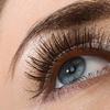 $11.50 for $22 Worth of Eyebrow and eyelash tinting