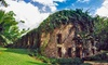 Haiku Mill - Makawao: Entry for Two or Four to a Walking Botanical Historical Tour at Haiku Mill (Up to 38%  Off)