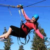 40% Off at Action Zipline Tours