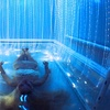 Up to 48% Off at Araaragot Center For Harmonic Consciousness