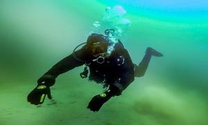 Szkoła Nurkowania LoveToDive.pl: Kurs nurkowania: pierwsze nurkowanie i teoria za 169,99 zł i więcej opcji w Szkole Nurkowania LoveToDive.pl (-51%)