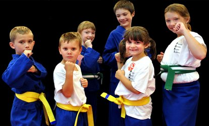image for One Month of Beginner's Karate for One or Two at Paks Karate Hero's March (Up to 88% Off)