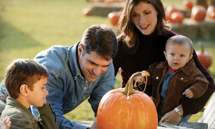 Bennett Farms - Heflin: Pumpkin-Patch Festivities for Two or Four at Bennett Farms in Heflin