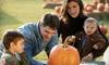 Bennett Farms - Heflin: Pumpkin-Patch Festivities for Two or Four at Bennett Farms in Heflin