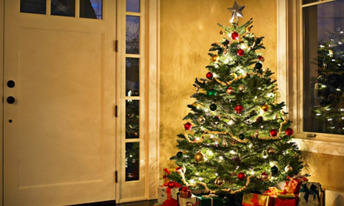 The Berry Barn - La Conner: $18 for a Douglas Fir Christmas Tree with Netting at The Berry Barn in Mount Vernon ($36 Value)