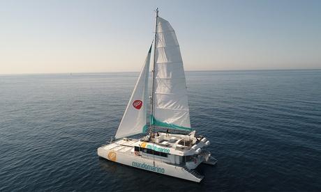 Excursión en catamarán durante 1 hora para 2, 4 u 8 personas con Mundo Marino Málaga (hasta 56% de descuento)