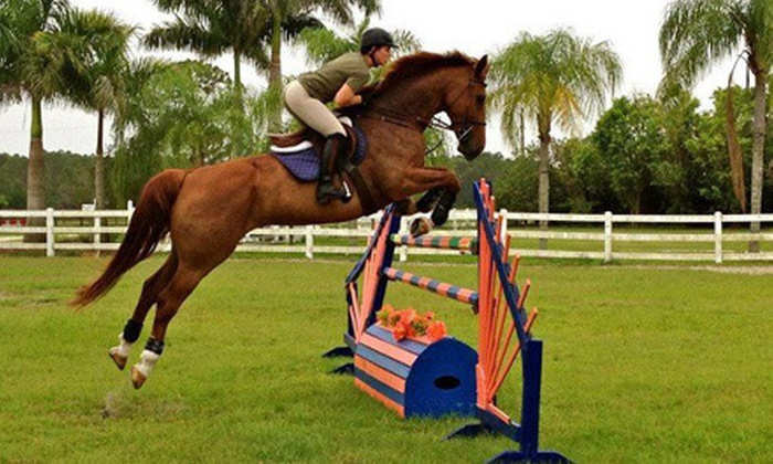 Vantage Point Equestrian - Southwest Ranches: One-Hour Private Horseback-Riding Lesson or Saddle Club Session for One Kid at Vantage Point Equestrian (Up to 51% Off)