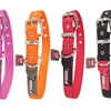 Petmate Dogzilla Adjustable Dog Collars