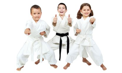 image for Five or Ten Little Dragons or Junior Warriors Martial Arts Classes at Omni Martial Arts