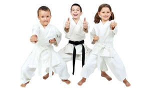 IWKA UK: Five or Ten Little Dragons or Junior Warriors Martial Arts Classes at Omni Martial Arts