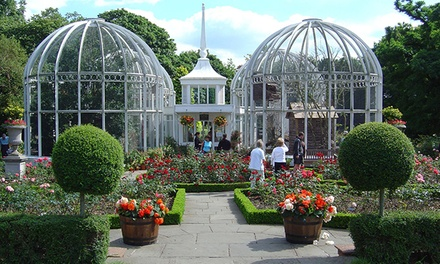 Botanical Garden Entry with Afternoon Tea for Up to Six at The Birmingham Botanical Gardens