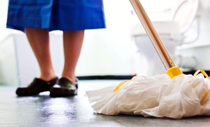 SoFlo True Clean: $58 for $130 Worth of Services — SoFlo True Clean