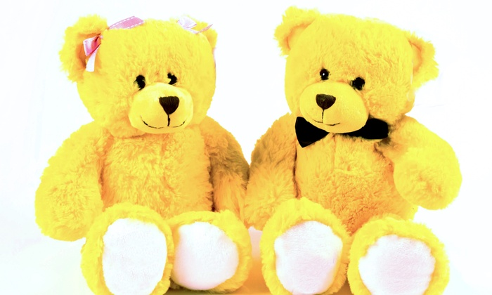 Ready Set Go, LLC - West Milford: $30 for Brian and Brianna the Anti-Bullying Superhero Bears Kit from Ready Set Go Now, LLC ($55 value)