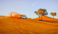 Abu Dhabi, Al Ain or Dubai City Tour for One from Arabian Desert Tours & Safari