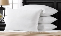 4Pk. Exquisite Hotel Collection Down-Alternative Pillows