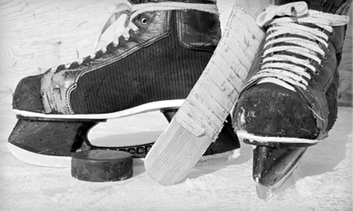 Valley Sports Zone - Chilliwack: $49 for Personal Skating-Training Sessions ($152 Value) or $76 for a One-Month Skatemill Pass ($304 Value) at Valley Sports Zone in Chilliwack
