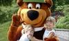 67% Off at Yogi Bear's Jellystone Park in Eureka