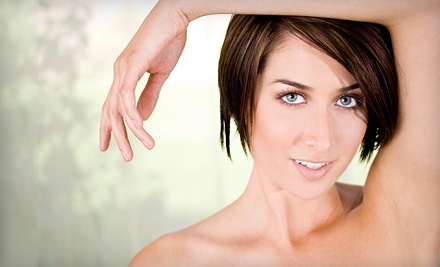 6 Laser Hair-Removal Treatments for 1 Small Area - Smooth Skin Centers in Centennial