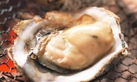 【50%OFF】ぷりっぷりの牡蠣を堪能≪がんがん焼きなど食べ放題120分≫ @浜の牡蠣小屋