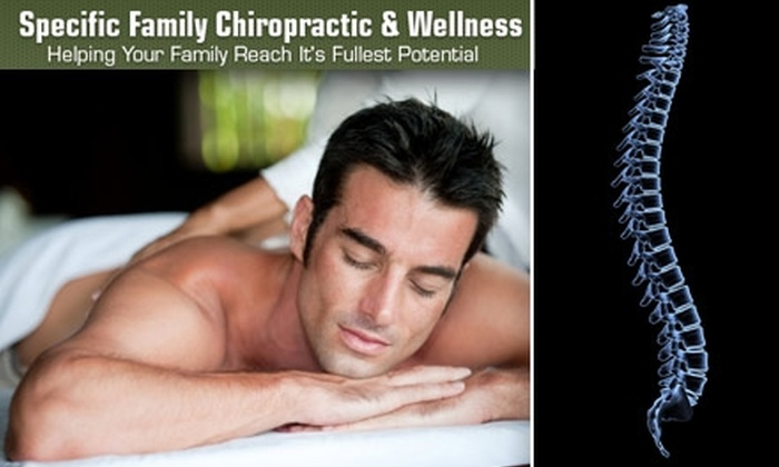 Specific Family Chiropractic - Minneapolis / St Paul: $57 for a Half-Hour Massage, X-Ray, and Chiropractic Exam at Specific Family Chiropractic and Wellness ($280 Value)