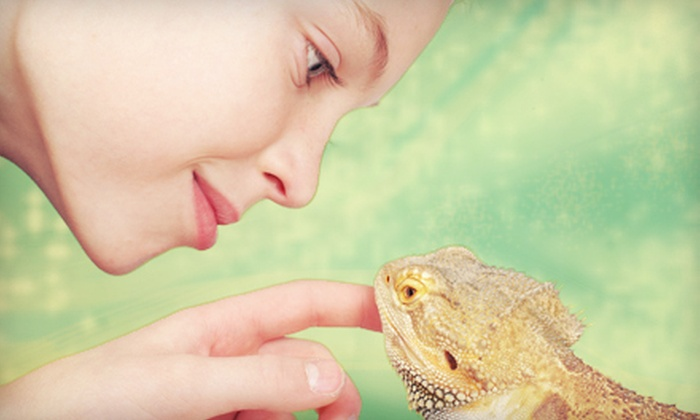 Iowa Reptile Rescue - Merle Hay: $39 for a Birthday Party with Reptiles for Up to 11 Kids at Iowa Reptile Rescue ($100 Value)