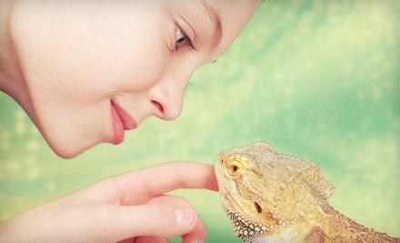 Iowa Reptile Rescue - Iowa Reptile Rescue in Des Moines