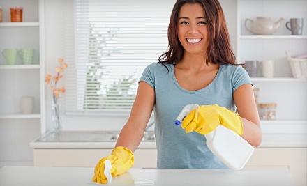 One 2-Man-Hour Housecleaning Session - Mr. Squeaky Clean in