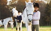 £30 Toward Horse Riding Lessons and Camps at Lee Hill Riding School & Livery (50% Off)