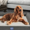 Sealy Orthopedic Foam Couch-Style Dog Bed