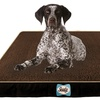 Cozy Comfy by Sealy Dog Beds