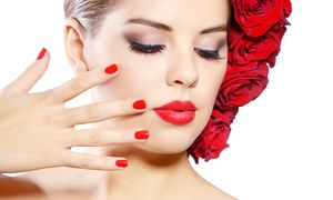 Evelina Beauty Salon: Shellac Manicure or Pedicure (£10.90) or Both (£20.90) at Evelina Beauty Salon