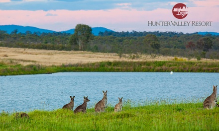 Hunter Valley: 12 Nights for Two with Wine Tasting, Vineyard Tour and Option for Train Transfer at Hunter Valley Resort