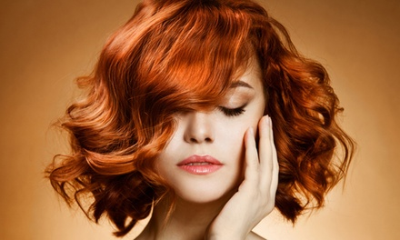 Hairdressing and Styling Online Course with International Open Academy (94% Off)