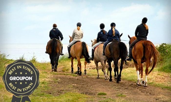 Grange Trekking - Grange Trekking: Horse Riding: Intro Lesson and 60-Minute Trek from £14 at Grange Trekking (59% Off)