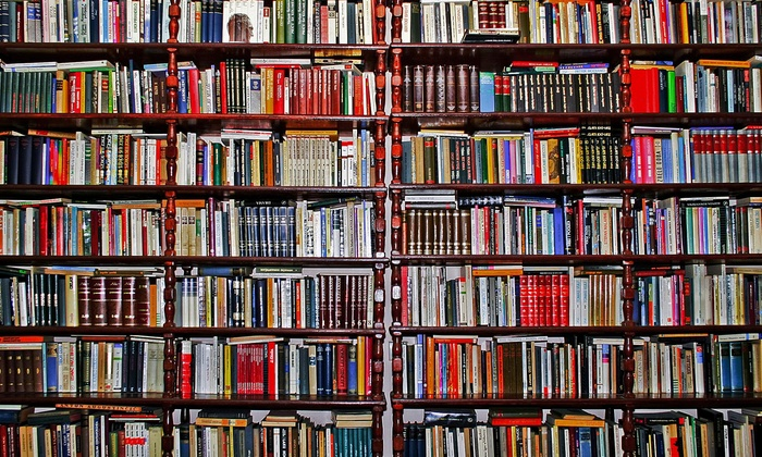 The Dollar Book Exchange - Portland: $10 for $100 Worth of Books — The Dollar Book Exchange