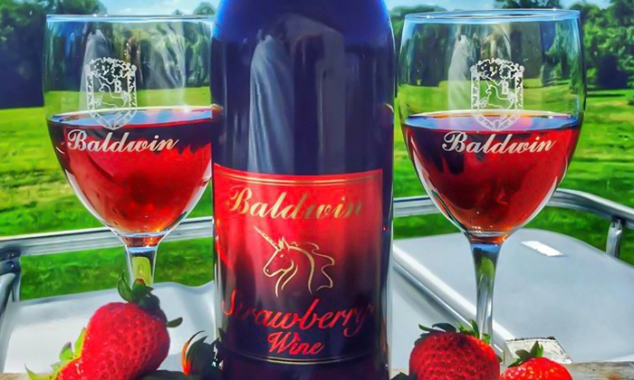 Baldwin Vineyards - Pine Bush: Strawberry, Chocolate & Wine Festival Tickets or Wine Tasting for 2 or 4 at Baldwin Vineyards (Up to 58% Off)