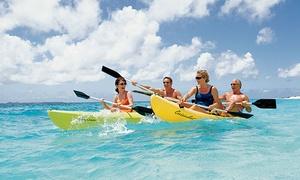 סרף קלאב-SURF CLUB: מועדון הגלישה סרף קלאב בחיפה: השכרת סאפ או קייאק ב-49 ₪ בלבד