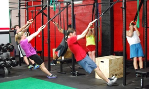 Rogue Training Garage: One Month of Unlimited Boot Camp for One or Two at Rogue Training Garage (Up to 65% Off)